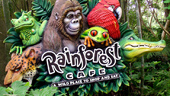 Rainforest Cafe® Animal Kingdom