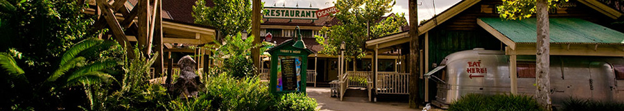 Disney's Animal Kingdom - Restaurantes