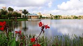 wdw-coronado-springs-overview-tranquil-lakeside-170x96.jpg