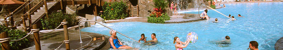 Disney's Polynesian Amenities