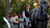 wdw-port-orleans-french-quarter-recreation-Horse_Drawn_Carriage_Rides-170x90.jpg
