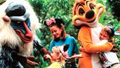 Camp Minnie-Mickey Greeting Trails